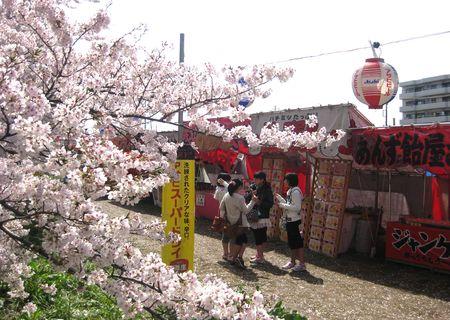 北越谷 桜 2013.04-7