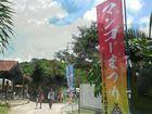宮古島マンゴー祭り