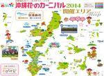 沖縄 花のカーニバル