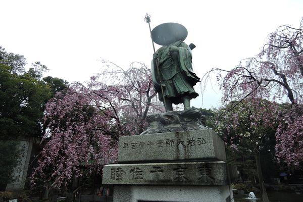 西新井大師 桜 04