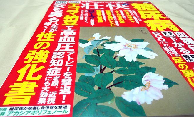 『壮快』(2015年11月号)